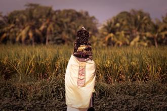 Manuel Kürschner, Balinese Shrine infront of rice field (Indonesia, Asia)