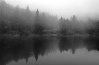 Michaela Ertelt, Evening fog at the lake (Germany, Europe)