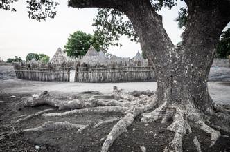 Dorf und Baum - fotokunst von Ulrich Kleiner