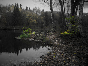 Michaela Ertelt, Am See (Deutschland, Europa)