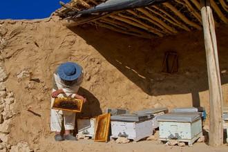 Rada Akbar, Honey making (Afghanistan, Asia)