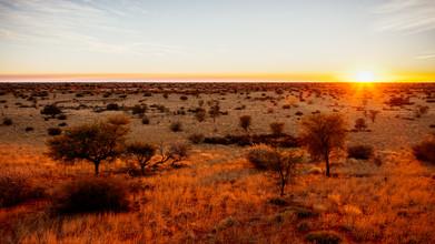 Dennis Wehrmann, Sunrise Kalahari Desert Namibia, Sonnenaufgang in der Kalahari Wüste in Namibia (Namibia, Afrika)