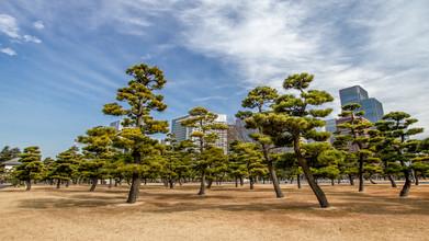 Jörg Faißt, Marunouchi Skyline (Tokyo) (Japan, Asia)