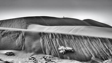Dennis Wehrmann, Die Dünen der Sossusvlei in Namibia (Namibia, Afrika)