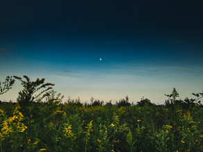 The Moon - Fineart photography by Greg Hogan
