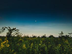 Greg Hogan, The Moon (Vereinigte Staaten, Nordamerika)
