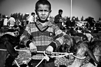 Brett Elmer, The next generation (China, Asien)