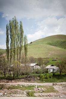 Jeanette Dobrindt, Das Leben eines Esels (Usbekistan, Asien)