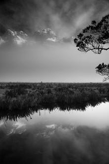 Marcos Sobral, Mirror Beauty (New Zealand, Oceania)