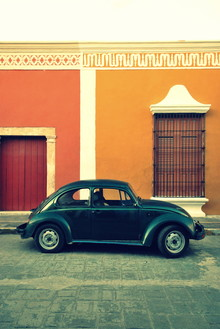 Julia Hafenscher, vw all over the places (Mexico, Latin America and Caribbean)