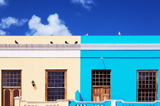Eva Stadler, Doves in Bo-Kaap, Cape Town (South Africa, Africa)