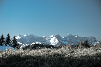 Gabriele Brummer, Alpenpanorama hinter Wiese (Deutschland, Europa)