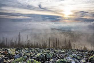Stefan Schurr, Nebel auf dem Lusen im Bayerischen Wald (Deutschland, Europa)
