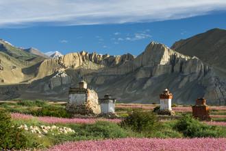 Dirk Steuerwald, Stupa in den bunten Feldern Mustangs (Nepal, Asien)