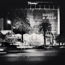 Ronny Ritschel, Flamingo - Las Vegas,* USA 2013 (Vereinigte Staaten, Nordamerika)