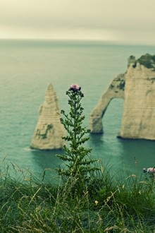 Thomas Hammer, Etretat (France, Europe)