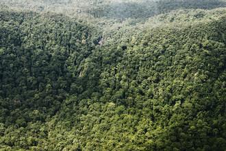 Jonas Bach, Rainforest II (Indonesien, Asien)