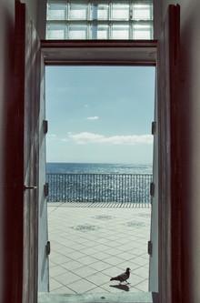 Ariane Coerper, My home is... (Italien, Europa)