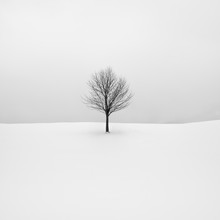 godot - Fineart photography by Hannes Ka