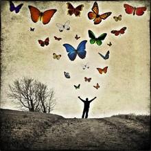 papillons - fotokunst von Frank Wöllnitz