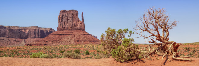 Melanie Viola, MONUMENT VALLEY Sentinel Mesa & West Mitten Butte (United States, North America)