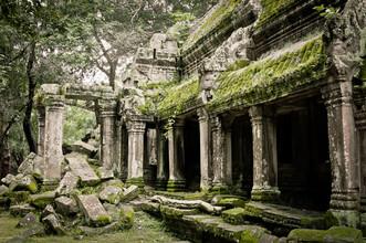 Staffan Scherz, Ta Prohm (Cambodia, Asia)