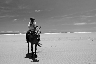 Horseback Beach - fotokunst von Alida Szabo
