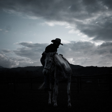 Raffaella Castagnoli, horseman's silhouette (Italy, Europe)