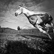 Raffaella Castagnoli, natural horsman (Italy, Europe)