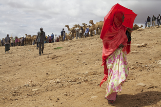Christina Feldt, Red lady at the camel market in Babille, Eastern Ethiopia (Äthiopien, Afrika)