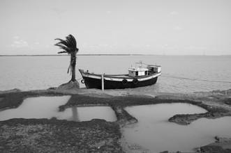 Sankar Sarkar, The sinking island. (Indien, Asien)