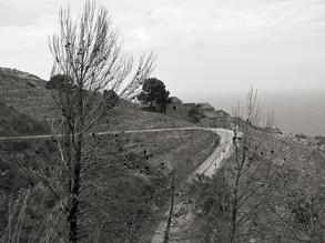 Silva Wischeropp, Monte Cofano - Verlassener Landstrich - Sizilien (Italy, Europe)