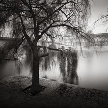 Palais Royal - Fineart photography by Ronny Behnert