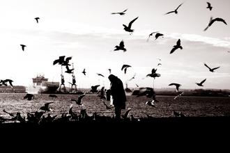 Daniele Cascato, Alleine unter Freunden am Hafen (United Kingdom, Europe)
