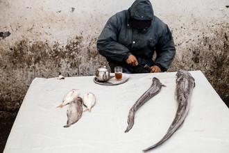 Steffen Rothammel, Fischmarkt Marokko (Morocco, Africa)