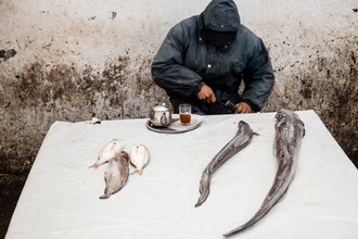 Steffen Rothammel, Fischmarkt Marokko (Marokko, Afrika)