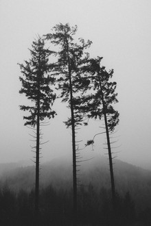 Nadja Jacke, Tönsberg im Teutoburger Wald im November (Deutschland, Europa)