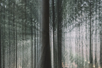 Nadja Jacke, Teutoburger Wald mit Sogwirkung (Deutschland, Europa)