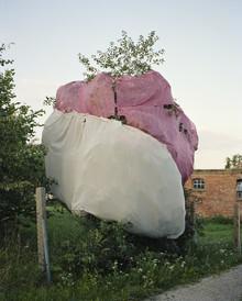 Piero Chiussi, Obstbaum (Deutschland, Europa)