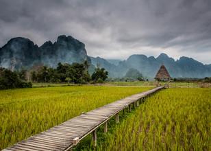Sebastian Rost, Steg ins Reisfeld (Laos, Asia)