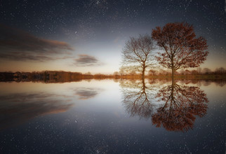Carsten Meyerdierks, Two Trees (Germany, Europe)