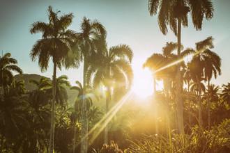 Saskia Gaulke, Sunshine (Cuba, Latin America and Caribbean)