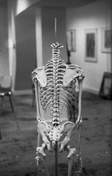 Madelaine Grambow, Skeleton (Deutschland, Europa)