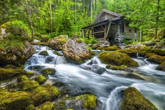 Günther Reissner, Old Mill (Österreich, Europa)