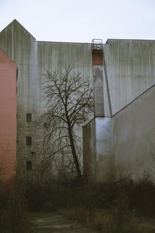 Emmanuele Contini, Winter beauty of a courtyard in Berlin Neukoelln (Germany, Europe)