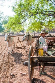 Juan Pablito Bassi, Farm Worker (Myanmar, Asien)