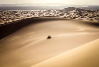 Timo Keitel, Woge (Marokko, Afrika)