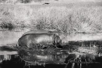 Tillmann Konrad, Out of my way (Namibia, Africa)