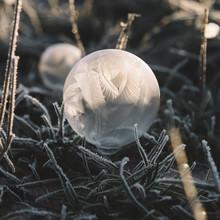 Nadja Jacke, Kunstwerk aus Seifenblasen (Deutschland, Europa)