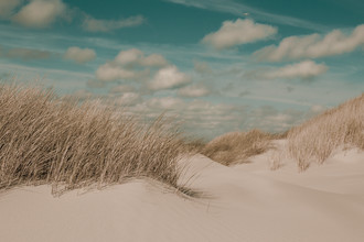 Holger Nimtz, dunes (Germany, Europe)